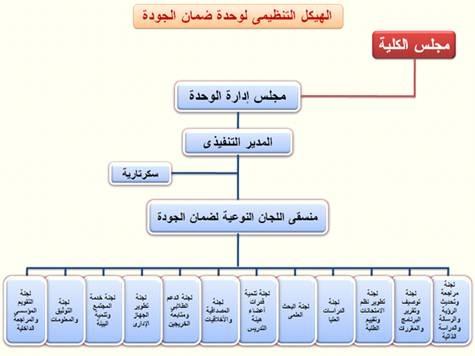 الهيكل التنظيمي لوحدة ضمان الجودة